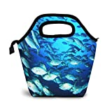 Bolsa Térmica Comida Bolsas De Almuerzo para Mujeres Hombres Niñas Niños Bolsa Isotérmica De Almuerzo Atún bajo el agua
