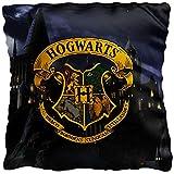 Harry Potter Kissen Hogwarts 40 x 40 cm Gryffindor Hufflepuff Ravenclaw Slytherin Ron Hermine...