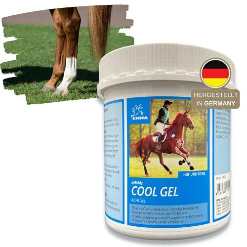 EMMA Gel naturale del cavallo a base di Arnica I cura e unguento per le gambe, balsamo per cavalli fresco e per la pelle, per le regioni particolarmente stressate come gambe, spalle o schiena 1000 ml