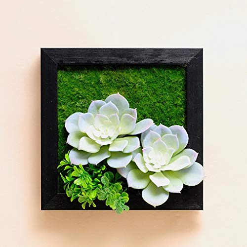HandWerk Dekoration Kreative Pflanzen Wanddekorationen Wand Wohnzimmer Esszimmer Wanddekorationen Anhänger Gemälde Bilderrahmen (Color : A)