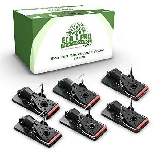 Mouse Trap by Eco Pro - Reusable 6 Pack of Small Mouse Traps That Work for Indoor and Outdoor Use - Easy and Quick Mice Snap Kill Trap with Bait, Powerful Mousetraps for Obnoxious Rodent Elimination