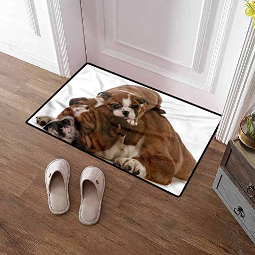 SCOCICI1588 Pet Mat English Bulldog, Father and Son Commercial Grade Rubber Floor Mat Ideal for Inside Outside High Traffic Area 16 x 24 Inch