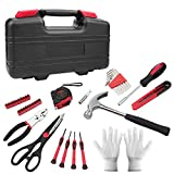 40 Pieces of Portable Repair Tool Set, Classic General Household and Car Tool Kit with Toolbox Storage Case (Black red)