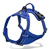 Chai's Choice Best Outdoor Adventure Dog Harness (Royal Blue Large)