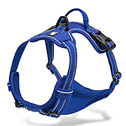 Chai's Choice Best Outdoor Adventure: Best No Pull Dog Harness