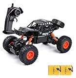 Remote Control Truck ,1:16 Off Road Remote Control Car with Two Rechargeable Batteries, 2.4Ghz 4WD All Terrain Rc Truck as Cool Birthday Gifts for Boys & Girls Age 4 5 6 7 8 9 10 11 12