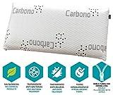 DHestia - Almohada Viscoelástica Carbono Activo Anti Malos Olores y Anti Humedades Doble Funda ViscoActive. (120 cm)