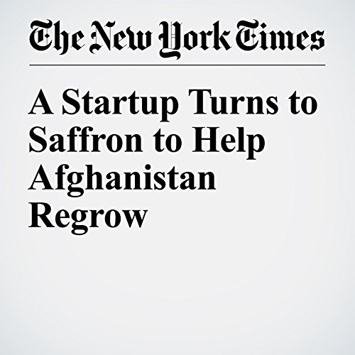 A Startup Turns to Saffron to Help Afghanistan Regrow audiobook cover art