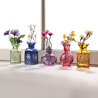 ART & ARTIFACT Set of 5 Petite Glass Bud Vases in Clear or Jewel Tones- Fun Shapes, 2 3/4 -3 3/4  H - Jewel Tones