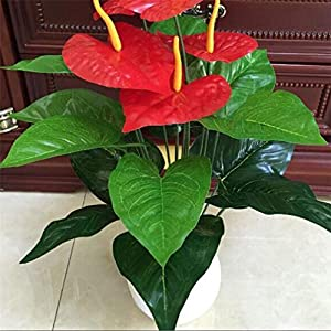 18 Heads Artificial Flower Small Potted Plant Silk Suit Large Potted Anthurium Office Decora