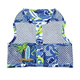DOGGIE DESIGN Cool Mesh Dog Harness with Leash Surfboard Blue and Green (Small)