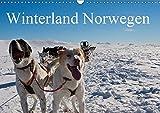 Winterland Norwegen (Wandkalender 2019 DIN A3 quer): Dort, wo man den Winter noch erleben kann. (Geburtstagskalender, 14 Seiten ) (CALVENDO Natur) - Paul Linden