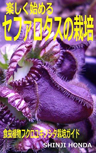 楽しく始めるセファロタスの栽培: 食虫植物フクロユキノシタ栽培ガイド