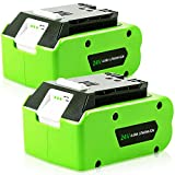 TenHutt 2 Pack 24V 6.0Ah Replacement Battery for Greenworks 29842 29852 Lithium Battery Compatible with 20352 22232 2508302 24V Cordless Tools
