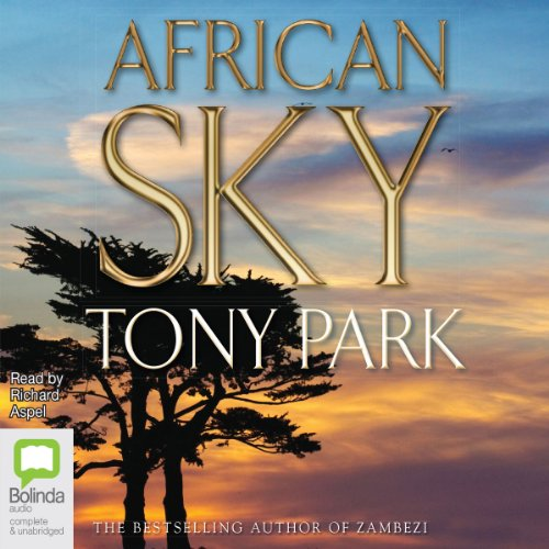African Sky audiobook cover art