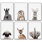 Safari Baby Animals Adorable Furry North American Portraits Nursery Decor Art - Set of 6 UNFRAMED Wall Prints 8'x10'-Zebra,Owl,Rabbit,Deer,Elephant,Alpaca