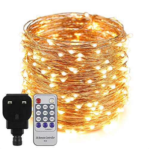 Erchen Plug in Fairy Lights, 100 FT 30M 300 LED Dimmable Copper Wire LED Starry String Lights with 12V DC Power Adapter Remote Control for Wedding Christmas Party Bedroom (Warm White)