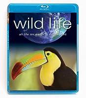 Wild Life [Blu-ray] [Import]