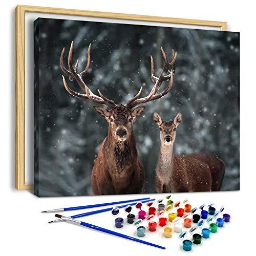 AiN Katy - Noble Hirsche - Malen Nach Zahlen DIY - Bastelset aus Leinwand mit Rahmen, Farben, Pinseln - für Erwachsene, Kinder, Einsteiger - perfekt als Wandbild, Poster