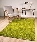 The Rug House Alfombra Ontario para Salón de Color Verde Anti-Pelusa Resistente Pelo Shaggy Largo