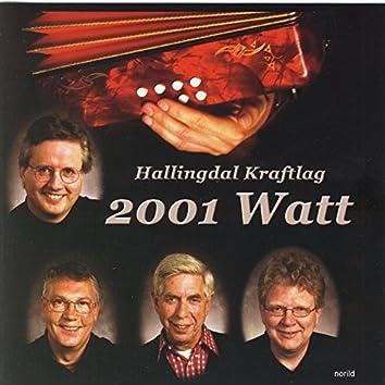 2001 Watt