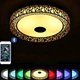 Ceiling Light With Bluetooth Speakers Review and Comparison