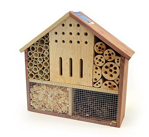 DUVO+ Oberon Maison d'Insecte pour Oiseau/Animaux Sauvages
