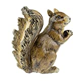 CLEVER GARDEN Squirrel Garden Statue Outdoor Décor, Resin Figurine Decoration for Lawn, Yard, Patio, Porch, and More
