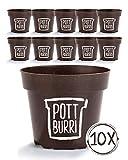 POTTBURRI® 10x Anzuchtstöpfe | Nachhaltiger Pflanztopf