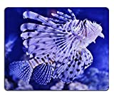 luxlady Caucho Natural Gaming Mousepads Close Up de Lion peces de acuario imagen ID 25250068