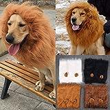 Cane Pet Costume, Cane Regolabile Parrucca Leone con Orecchie per Halloween Natale Partito Vestire Costume per Medio Grande Taglia Cane