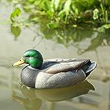 Sharplace Kunststoff Lockvogel - Schwimmend Ente Henne Köder Jagd Fischerei Garten Teich - Enten