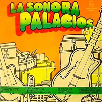 Sonora Palacios, Vol. 6