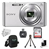 Sony DSC-W830 Cyber-Shot 20.1MP 2.7-Inch LCD Digital Camera Silver Bundle with Sandisk 16GB Memory Card, Point and Shoot Case, Table-top Tripod and Accessories (5 Items)