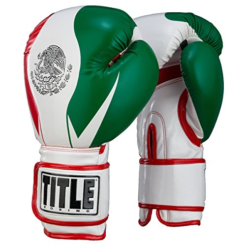 Title Infused Foam El Combate Mexico Training Gloves, Mexico, Large