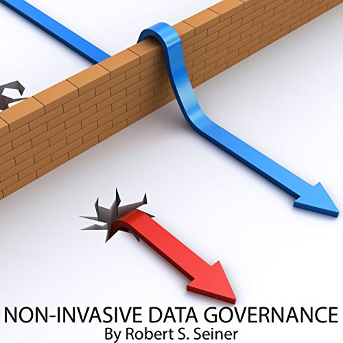 Non-Invasive Data Governance cover art