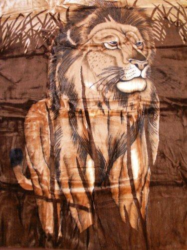 Natur-Fell-Shop Kuscheldecke Tagesdecke Decke Motiv Löwe 160x200cm