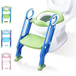 Potty toilet trainer set with step stool ladder