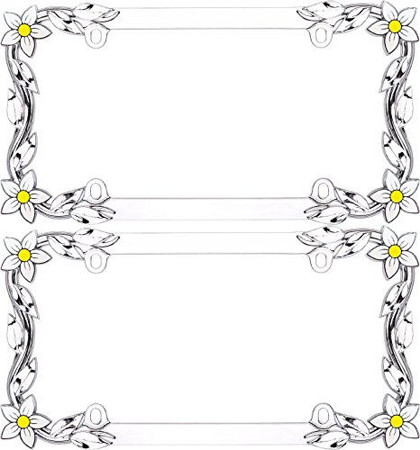 license plate frame with flowers - 9