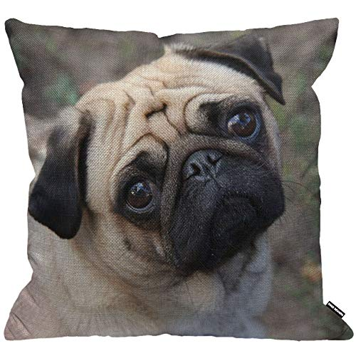 HGOD DESIGNS Cushion Cover Pug Dog,Throw Pillow Case Home Decorative for Men/Women Living Room Bedroom Sofa Chair 18X18 Inch Pillowcase 45X45cm