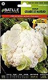 Semillas Hortícolas - Coliflor Grande Navidad (Dic-Ene) - Batlle