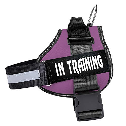 WOCUME Dog Harness No Pull Adjustable Pet Vest Harness Training Vest Working Dog Chest Harness with Handle,No More Pulling, Tugging or Choking(L,Purple)