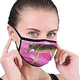 CZLXD Máscara Antipolvo para Perro de la Vida del Carlino, máscara de Boca anticontaminación para Hombre y Mujer