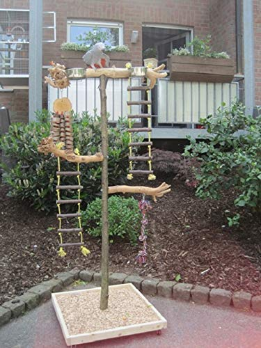 Kletterbaum für Vögel Papageien Freisitz Java Tree Wurzelholz Papageienspielzeug 1,60
