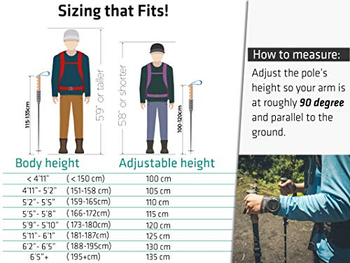 Trekology Trek-Z Trekking Hiking Poles - 2pc Pack Collapsible Folding Walking Sticks, Strong Lightweight Aluminum 7075,Adjustable Quick Flip-Lock, Foldable