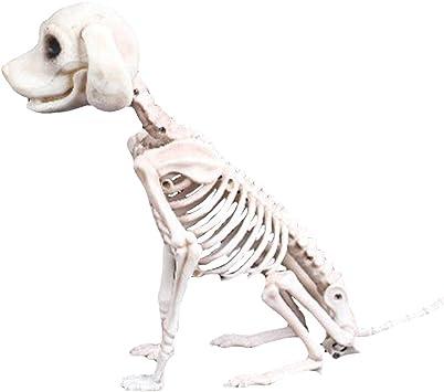 Halloween DNDoration Haunted House Simulation Cat Frog Animal Bone Head Shel G8