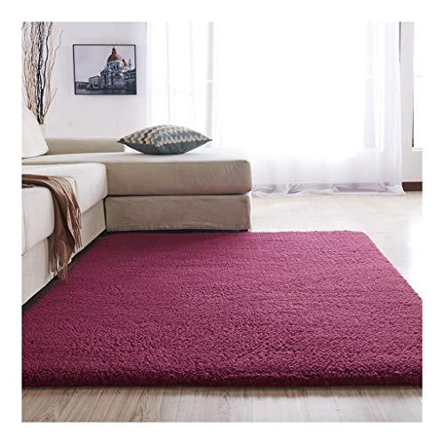 HAODAMAI tapijt antislipmat woonkamer salontafel tapijt slaapkamer glazen deur nachtkastje veranda 120x160cm Een