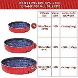 Doggy Pool das Planschbecken für  Hunde (160*30cm) - 6