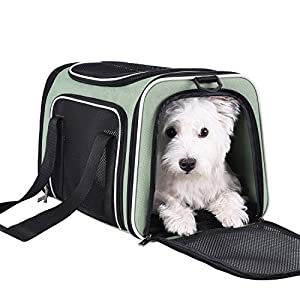 petisfam Pet Carrier for Medium Cats and Small Dogs with Washable Cozy Bed, 3 Doors and Shoulder Strap. Easy to get cat in, Easy to Storage and Escape Proof (Light Green)