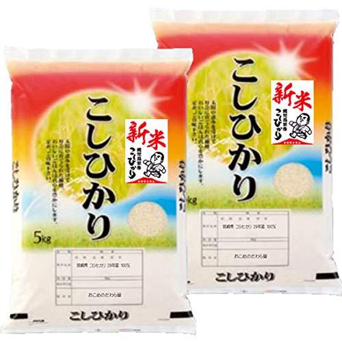 令和2年産 新米 鹿児島産 コシヒカリ 10kg (5kg×2袋) オーダー精米 (白米精米 約4.5kg×2袋でお届け)